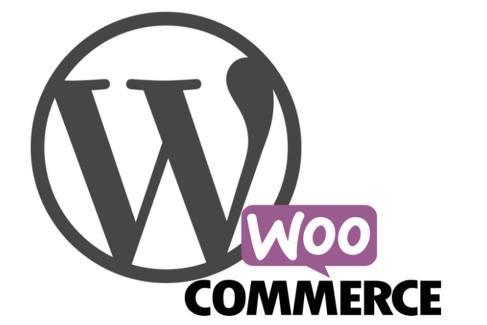 wordpress-vs-woocommerce
