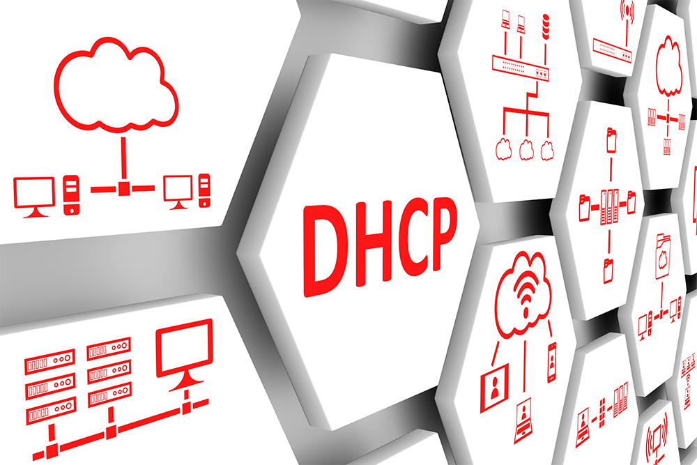 dhcp-client-server